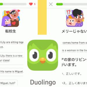新婚旅行の展開がアツイ!ゲーム感覚英語アプリDuolingo
