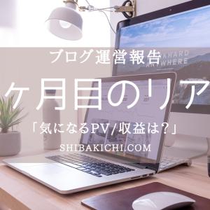 「ブログ運営報告」雑記ブロガー9ヶ月目のリアル【気になるPV/収益は?】