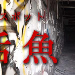心霊スポット!音声が入り込みました!千葉県活魚(油井グランドホテル)に行ったら、ラップ音やら人の声やら録れちゃった!