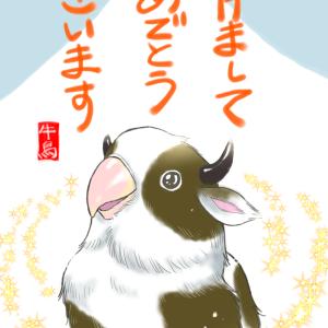 ブログ 24日目