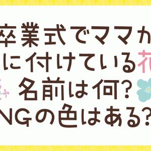 卒業式で胸につける花の名前は?NGの色がある?恥をかかない為の選び方