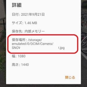【Android保存場所】スマホカメラやSNOW等のアプリで撮影した写真の保存先フォルダ確認方法