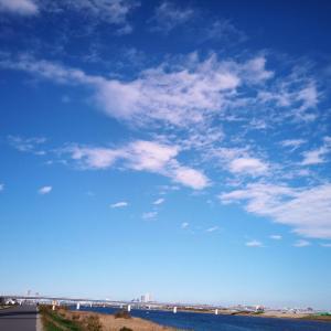 江戸川沿いを自転車で走る3連休最終日