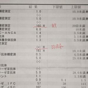 リウマチ膠原病内科でのお話 前回の検査結果
