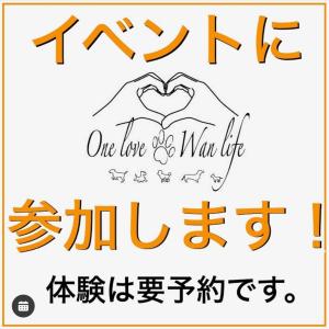 6月20日イベント『One love Wan life』at Jacks