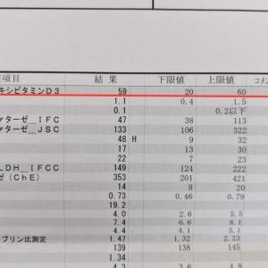 大学病院の定期検診 血液検査の結果 -血中ビタミンD濃度
