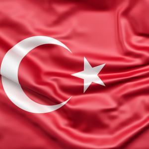 元トルコ戦士の借金おじさんがトルコリラで倍返し!