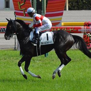 POG2021-2022 中内田厩舎に入厩予定の2歳馬情報