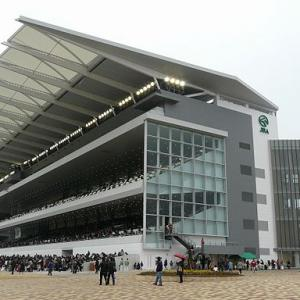 中京競馬場芝1200mの傾向と特徴(脚質・枠順・種牡馬・厩舎・騎手)