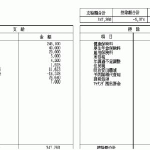 【貯金】【節約】【投資】2020/12給与明細公開!!