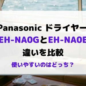 ナノケアEH-NA0GとEH-NA0Eの違いを比較!どっちが使いやすい?