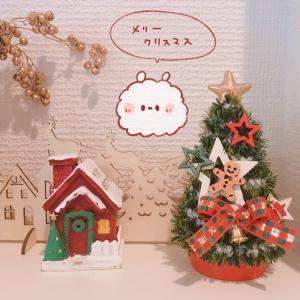 メリークリスマス♪今年のプレゼントはこれでした!