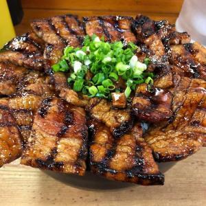 肉の花びら満開な「大豚丼(750g)」を食す【御茶ノ水・豚野郎】