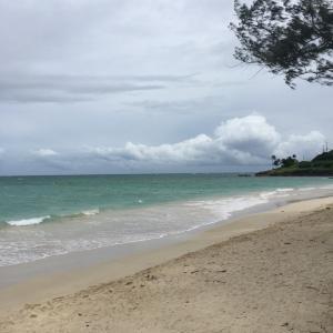ハワイにフラレッスンに行くと