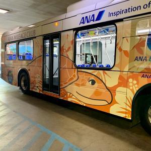 全日空・ANAエクスプレスバス
