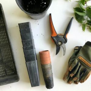 【初めてのガーデニング】植物を育てるときに揃えておきたい道具11選