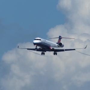飛行機を撮って来ました