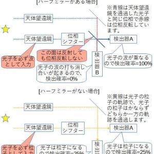遅延選択実験について(3)