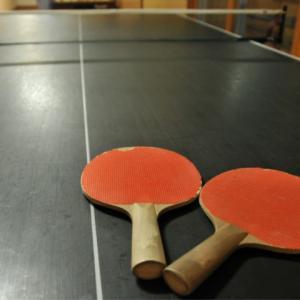 卓球のペトリサ・ソルヤがかわいい!日本人との対戦結果やwikiプロフも!