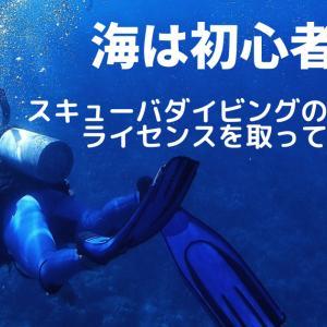 海は初心者!スキューバダイビングのライセンスは取ってよかった?