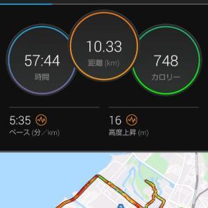 彦根市をランニング。琵琶湖と彦根城。2部練。10.3kmJOG。