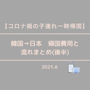 【コロナ禍の子連れ一時帰国】日本→韓国(釜山) 帰国費用と流れまとめ(後半)
