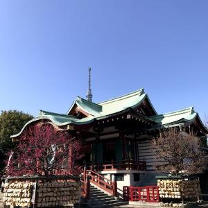 関東三大天神・江戸三大天神の一つ「亀戸天神社」。鷽(うそ)とは何?