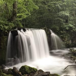 「青森県」で訪れたい3つの名所:弘前城・青森県立美術館・奥入瀬渓流