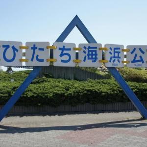 【希望の轍】で轍(わだち)の意味と茨城県・奈良県・神奈川県を学びます