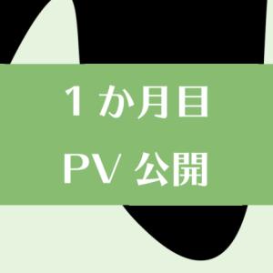 【1か月目】投資ブログ一ヶ月目のPV・収益を公開