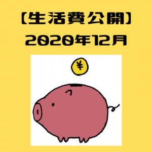 1人暮らしゆるミニマリストの生活費公開。【2020年12月】