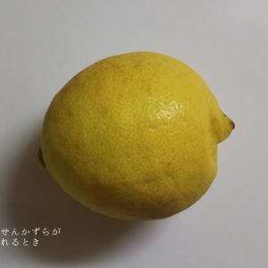 知恵袋シリーズ3(レモンのカット方法)