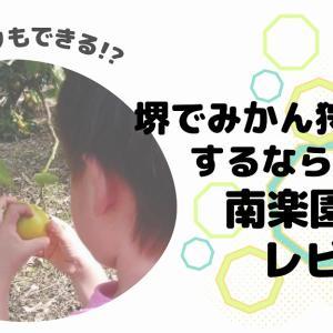 堺市の観光農園「南楽園」レビュー 3歳未満の収穫体験は、みかん狩りで決まり!