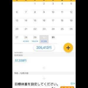 12/30収支 +57,338円(3/365)