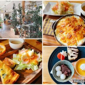 【光と風のカフェ セロリ】緑たくさん!ほっこり落ち着く&おいしいカフェ