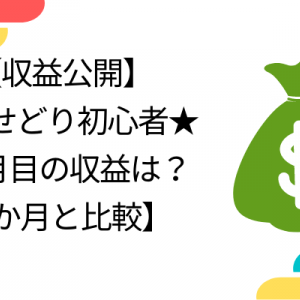 【実録】古着せどり初心者★6か月目の収益は?完全独学【1か月と比較】