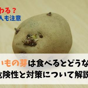 【食中毒】じゃがいもの芽は食べるとどうなるか?危険性と対策について解説