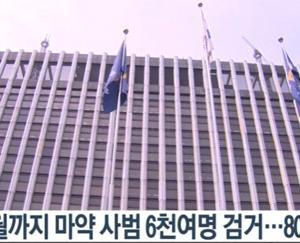 薬に逃げるバ韓国塵どもwww 麻薬類管理法違反の屑チョン、8割が初犯!!