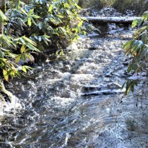 小川の凍結