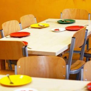 リヨン市:肉なし給食論争… 過熱の原因は?