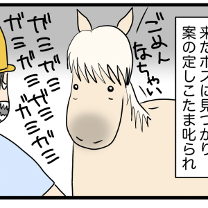 馬も徹夜明けは眠いのか。夜更かしのツケは睡魔。