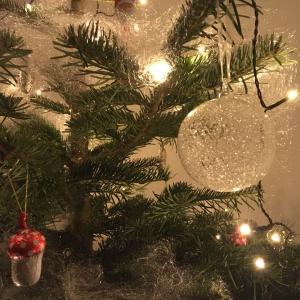 スイスのクリスマス②生もみの木