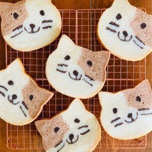 食パンに癒される⁉岡山県倉敷市に初上陸の『ねこねこ食パン』が可愛すぎてたまらない!【岡山お出掛けスポット】