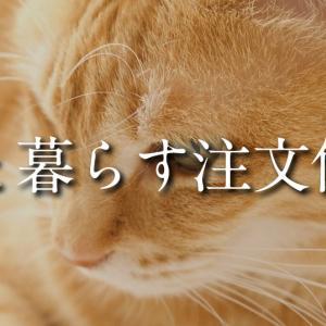 猫と暮らす注文住宅で意識したこと/注意点