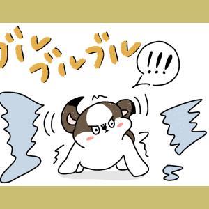 【初シャンプー】FIRST BATH