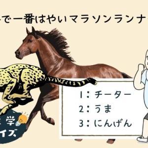 【雑学クイズ】動物界で一番はやいマラソンランナーは?