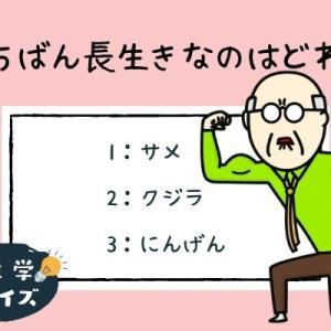 【雑学クイズ】サメ、クジラ、人間、いちばん長生きなのは?