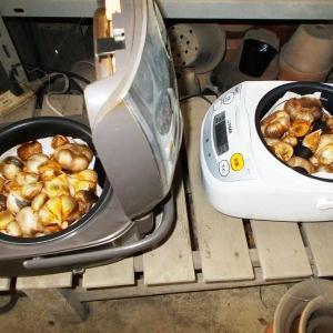 発酵黒にんにくを2つの炊飯器で!