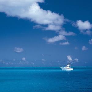 船を流すポイントが釣果を決める【その日最初に行く事にしたポイントが決め手】