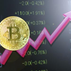Bitcoinが大変なことに